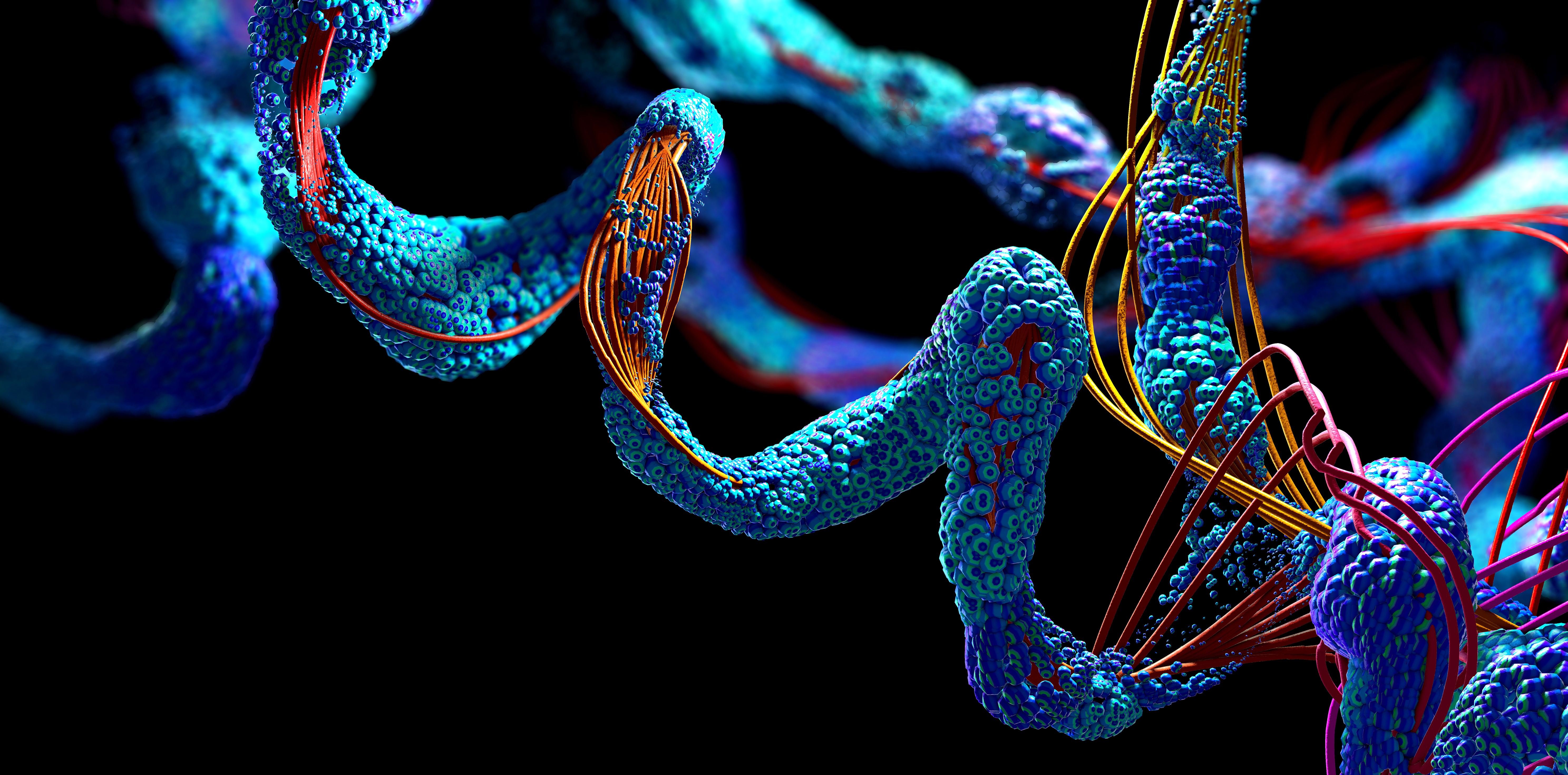 3D Illustration of Protein